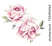 Watercolor Pink Peonies...