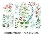 hand drown watercolor set of...   Shutterstock . vector #735519226