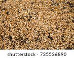 food for birds on the ground | Shutterstock . vector #735536890