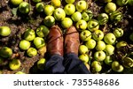Boots With Apples On Ground