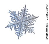 snowflake isolated on white... | Shutterstock . vector #735598840