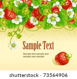 vector strawberry frame 2. red... | Shutterstock .eps vector #73564906