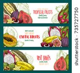 exotic fruit sketch banner of... | Shutterstock .eps vector #735727750