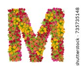 Small photo of Letter M alphabet made from zinnia flower ABC concept type as logo.Typography design with clipping path