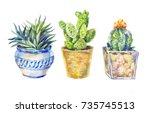 set of flowers in pots  indoor... | Shutterstock . vector #735745513