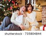 senior couple in front of... | Shutterstock . vector #735804844