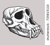 monkey skull vector    Shutterstock .eps vector #735815110