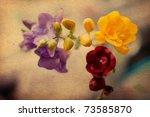 Beauty Spring Flowers  Vintage...