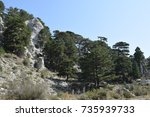 trees and rocky mountain in... | Shutterstock . vector #735939733