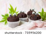 chocolate muffins with... | Shutterstock . vector #735956200