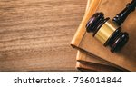 law gavel on law books  wooden... | Shutterstock . vector #736014844
