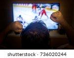 back view of excitement man... | Shutterstock . vector #736020244