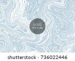 vector liquid texture. grunge... | Shutterstock .eps vector #736022446