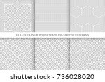 collection of seamless striped... | Shutterstock .eps vector #736028020