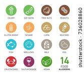 set of food allergens | Shutterstock .eps vector #736028860