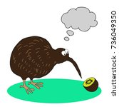 kiwi bird colourful cartoon.... | Shutterstock .eps vector #736049350
