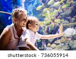 mother and son watching sea... | Shutterstock . vector #736055914