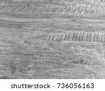 wood background texture... | Shutterstock . vector #736056163