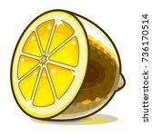 gold lemon. vector illustration. | Shutterstock .eps vector #736170514