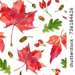 hand painted watercolor autumn... | Shutterstock . vector #736184626