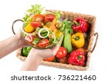 two hands showing the luxuries... | Shutterstock . vector #736221460