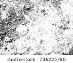distressed overlay texture of... | Shutterstock .eps vector #736225780