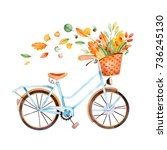 bicycle with bouquet of fall... | Shutterstock . vector #736245130