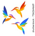 stylized birds   kingfishers in ... | Shutterstock .eps vector #736264669