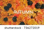 autumn background with letters... | Shutterstock . vector #736272019