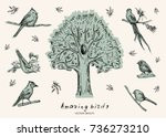 vector illustration. pen style... | Shutterstock .eps vector #736273210