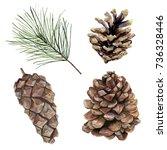 Watercolor Pine Cones Set. Han...
