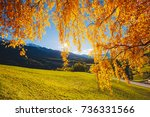 magic image of sunny hills in... | Shutterstock . vector #736331566