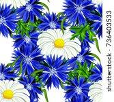 vector seamless flower pattern... | Shutterstock .eps vector #736403533
