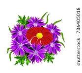 vector bouquet of flowers for... | Shutterstock .eps vector #736405018