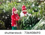 family selecting christmas tree.... | Shutterstock . vector #736408693