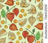 seamless pattern with physalis  ... | Shutterstock .eps vector #736412050