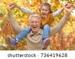 grandfather and granddaughter... | Shutterstock . vector #736419628