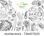 spring rolls and healthy food... | Shutterstock .eps vector #736427620