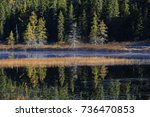 autumn reflection in mont... | Shutterstock . vector #736470853