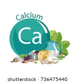 calcium. composition of a round ... | Shutterstock .eps vector #736475440