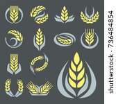 cereal ears and grains... | Shutterstock .eps vector #736484854
