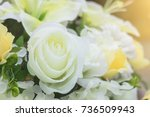 decorative bouquet with white... | Shutterstock . vector #736509943