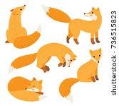 cute fox set | Shutterstock .eps vector #736515823