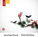 pine tree  sakura cherry tree... | Shutterstock .eps vector #736520566
