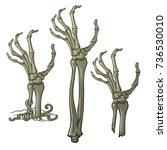 pair of zombie hands rising... | Shutterstock .eps vector #736530010