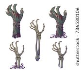set of lifelike depicted... | Shutterstock .eps vector #736530106