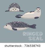 ringed seal cartoon vector... | Shutterstock .eps vector #736538743