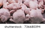 chicken market | Shutterstock . vector #736680394
