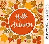 hello autumn illustration with...   Shutterstock . vector #736704118