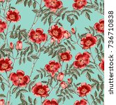 background with a red rose....   Shutterstock . vector #736710838